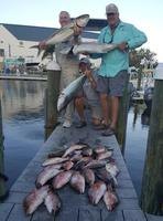 Fishing trips in Pine Island, Ft Myers, Cape Coral, Sanibel, and Captiva